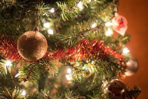 Kerstmis vier je samen! U kunt op één van deze vier dagen genieten van een overheerlijk, gezellig & stijlvol kerstdiner.… Bekijken