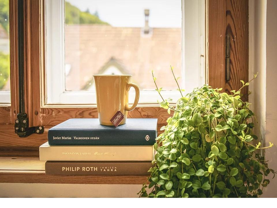 Welk boek ligt er bij U in de vensterbank? Wij zijn benieuwd! Zelf hebben we een aantal voorkeuren, welke? Ik vertel het u graag tijdens het diner of gewoon bij… Bekijken